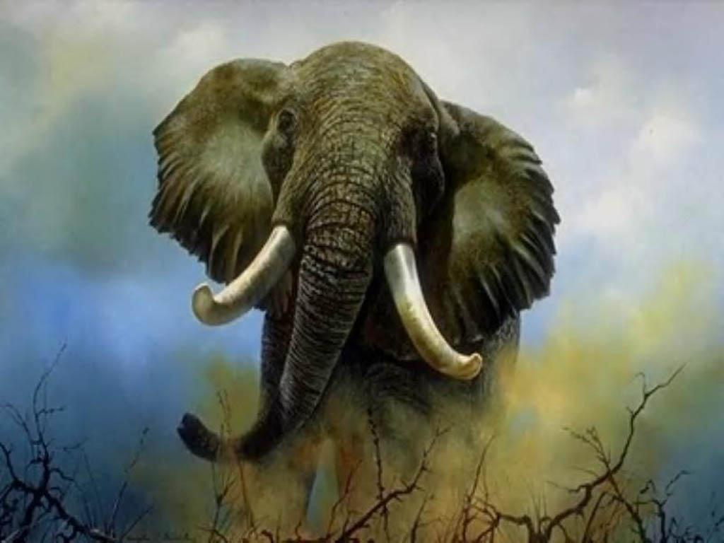 Animal terrestre mas grande del mundo