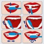 dientes p