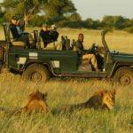 zafari serengueti