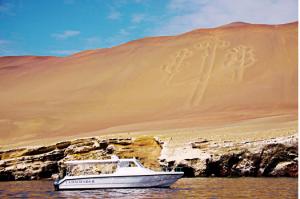 Islas Ballestas Perú, tomada de internet