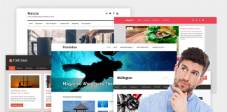 elegir theme wordpress