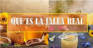 Jalea real beneficios