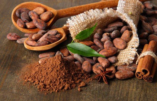 Contemplan presupuesto de 100 mdp para industria del cacao