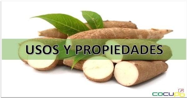 usos y propiedades de la yuca