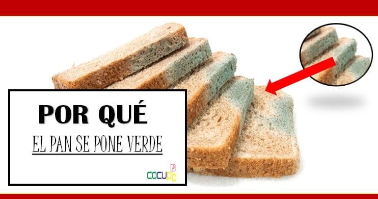 razones pos las que se pone verde el pan